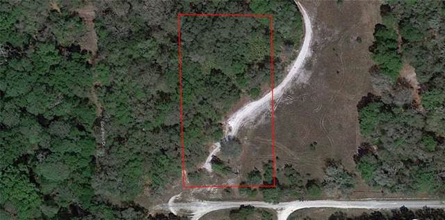 33099 Coral Rock Drive, Webster, FL 33597 (MLS #P4907255) :: Cartwright Realty