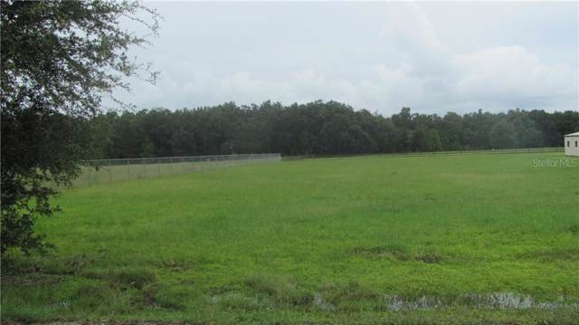 Wells Road, Mulberry, FL 33860 (MLS #P4907275) :: Cartwright Realty