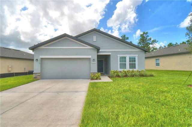 1115 Tobie Street, Lake Wales, FL 33853 (MLS #P4907402) :: Florida Real Estate Sellers at Keller Williams Realty