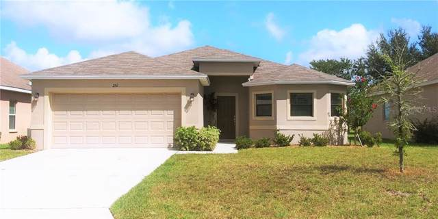 251 Towerview Drive W, Haines City, FL 33844 (MLS #P4907800) :: Lovitch Realty Group, LLC