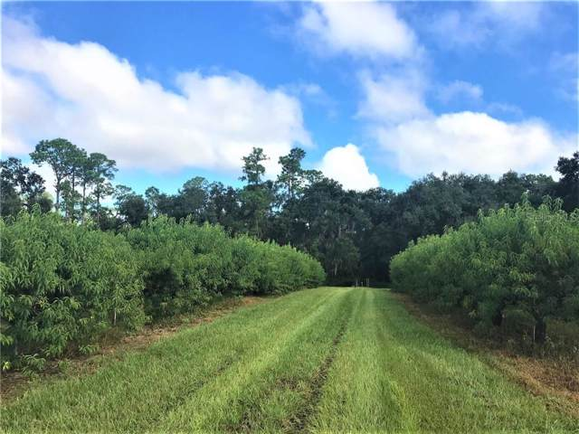 545 Old Bartow Lake Wales Road, Bartow, FL 33830 (MLS #P4908099) :: Florida Real Estate Sellers at Keller Williams Realty