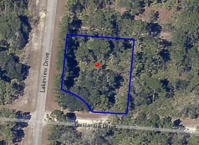 924 Gaillardia Drive, Indian Lake Estates, FL 33855 (MLS #P4908184) :: Team Vasquez Group