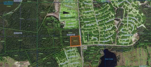 0 Marigold Avenue, Haines City, FL 33844 (MLS #P4908474) :: Lovitch Realty Group, LLC