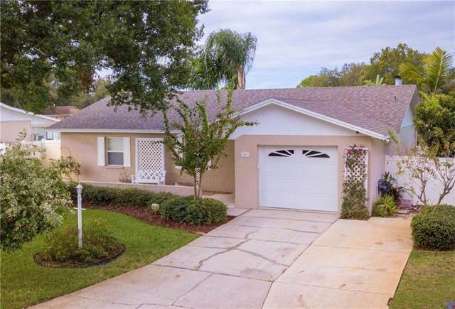 349 Holly Ridge Road, Winter Haven, FL 33880 (MLS #P4908519) :: The Price Group