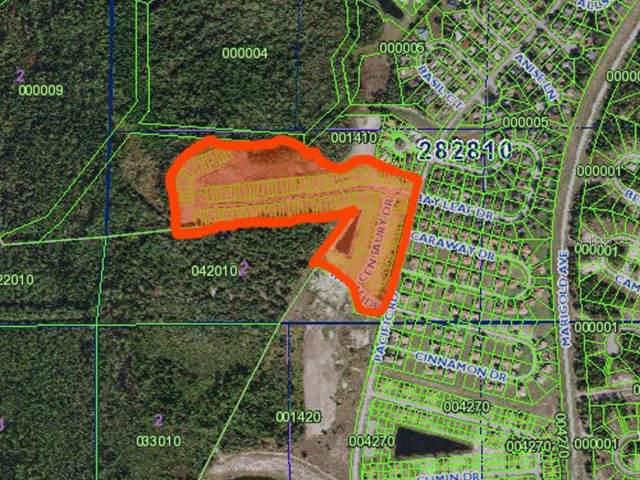 0 Bay Leaf Drive, Poinciana, FL 34759 (MLS #P4908542) :: Premium Properties Real Estate Services