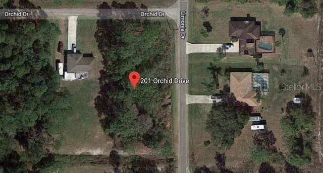201 Orchid Drive, Indian Lake Estates, FL 33855 (MLS #P4908640) :: Team Bohannon Keller Williams, Tampa Properties