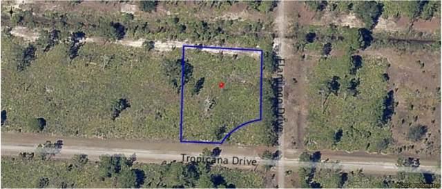 0 Tropicana Drive, Indian Lake Estates, FL 33855 (MLS #P4908676) :: Team Bohannon Keller Williams, Tampa Properties