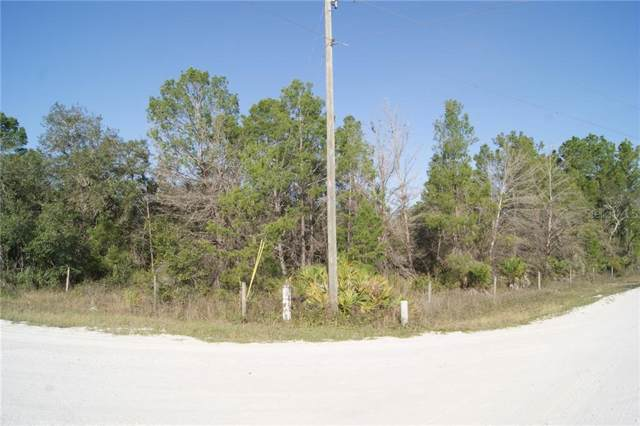 2204 R E Byrd Road, Frostproof, FL 33843 (MLS #P4909313) :: The Duncan Duo Team