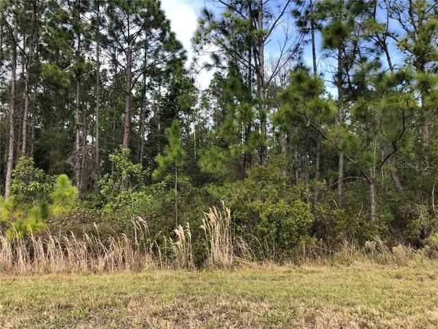 Florida Jay Lane, Frostproof, FL 33843 (MLS #P4909599) :: Delgado Home Team at Keller Williams