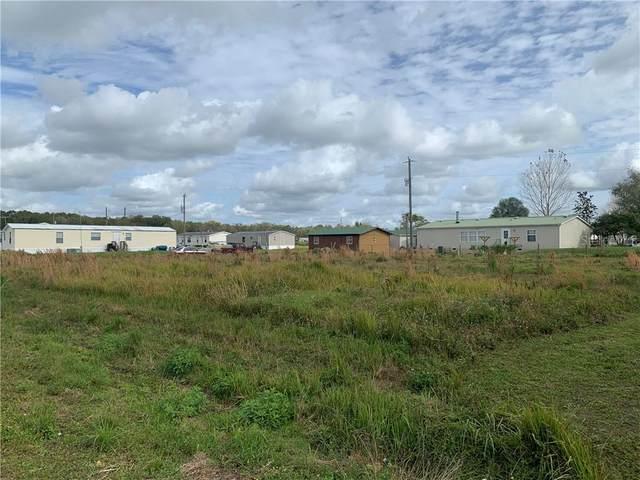 1274 Sparrow Road, Wauchula, FL 33873 (MLS #P4909860) :: Delgado Home Team at Keller Williams