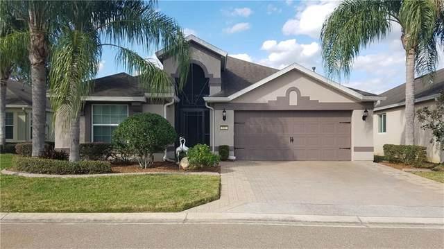 532 Arena Drive, Davenport, FL 33837 (MLS #P4909919) :: Bustamante Real Estate