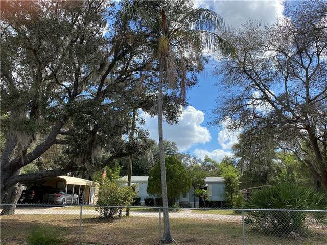 3900 Fast Trot Trail, Lake Wales, FL 33898 (MLS #P4910344) :: Cartwright Realty
