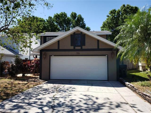 705 Lake Dexter Circle, Winter Haven, FL 33884 (MLS #P4910387) :: Carmena and Associates Realty Group