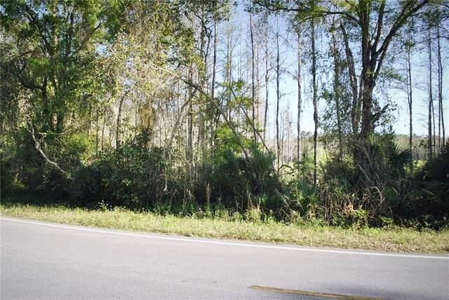Poyner Road, Polk City, FL 33868 (MLS #P4910475) :: Bustamante Real Estate