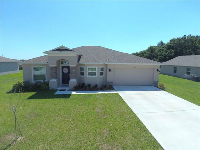 1016 15TH Street NE, Winter Haven, FL 33881 (MLS #P4910712) :: Rabell Realty Group