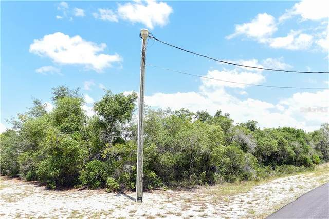Deer Road, Frostproof, FL 33843 (MLS #P4910866) :: Team Pepka