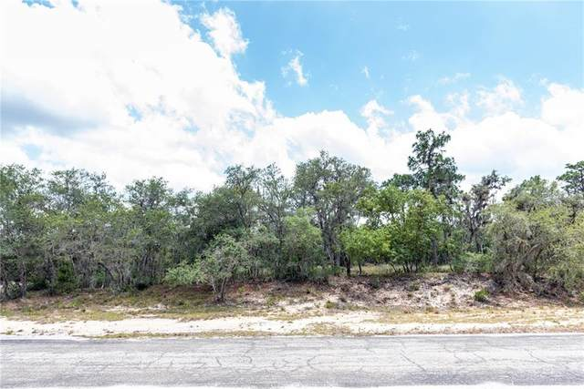 Deer Road, Frostproof, FL 33843 (MLS #P4910871) :: Team Pepka
