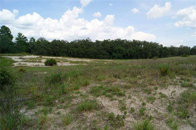 1987 Old Grove Trail, Frostproof, FL 33843 (MLS #P4910898) :: Team Pepka