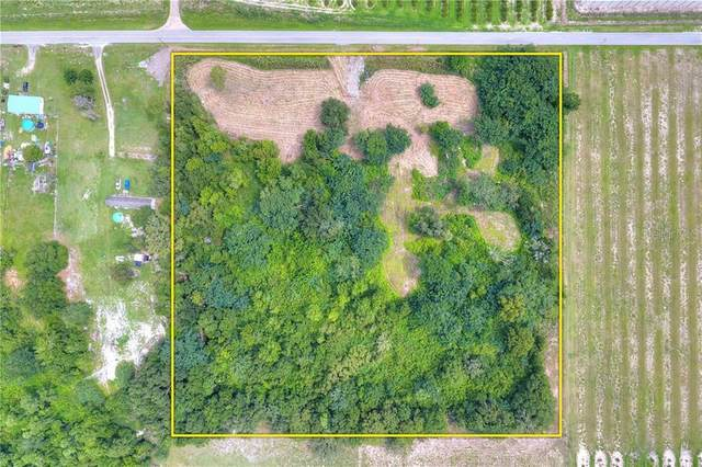 7425 Alturas Babson Park Cutoff Road, Bartow, FL 33830 (MLS #P4910913) :: Team Borham at Keller Williams Realty
