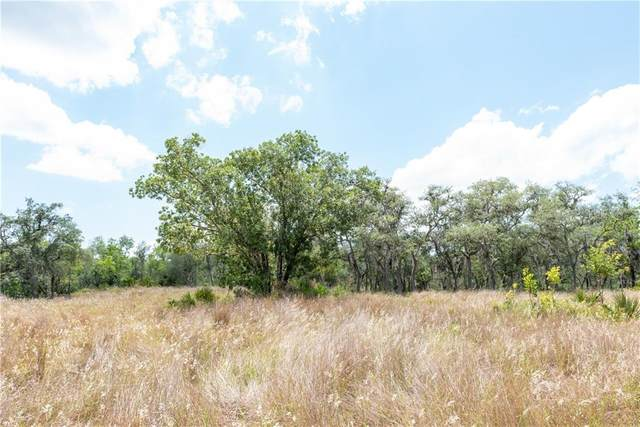 Deer Road, Frostproof, FL 33843 (MLS #P4910940) :: Team Pepka