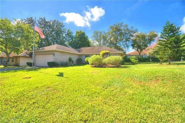 1410 Chamberlain Loop, Lake Wales, FL 33853 (MLS #P4911065) :: Armel Real Estate