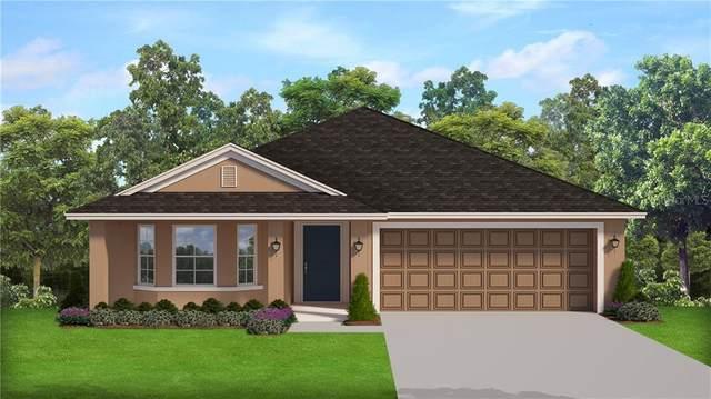 293 Citrus Pointe Drive, Haines City, FL 33844 (MLS #P4911084) :: Sarasota Gulf Coast Realtors