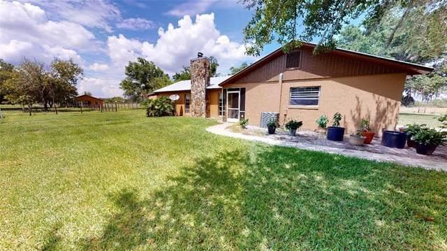 1242 Durrance Road, Lake Placid, FL 33852 (MLS #P4911262) :: Cartwright Realty