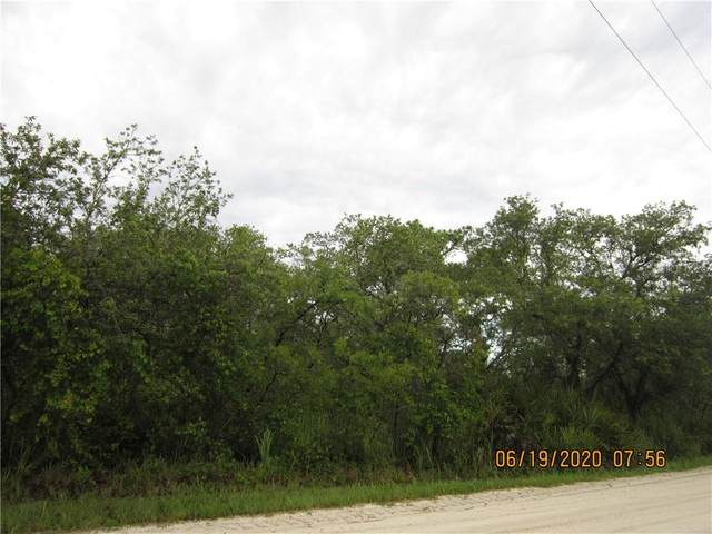 1350 R E Byrd Road, Frostproof, FL 33843 (MLS #P4911295) :: Griffin Group