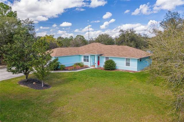9331 Pinetree Drive, Lake Wales, FL 33898 (MLS #P4911361) :: Griffin Group
