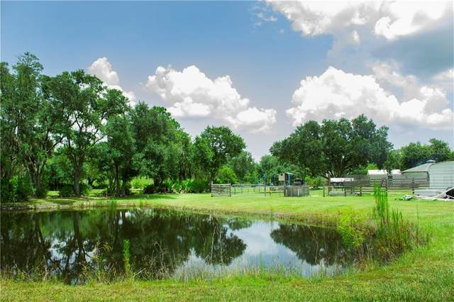 10819 Schaefer Lane, Lake Wales, FL 33898 (MLS #P4911388) :: Florida Real Estate Sellers at Keller Williams Realty