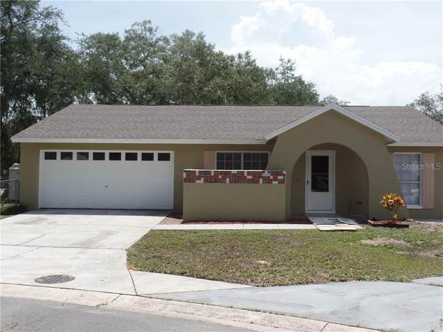 1602 Crystalview Trail, Lakeland, FL 33801 (MLS #P4911502) :: The Light Team