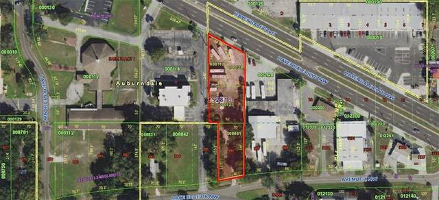 3656 Havendale Boulevard NW, Winter Haven, FL 33881 (MLS #P4911519) :: The Light Team