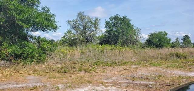 0 Key Deer Avenue, Lake Wales, FL 33859 (MLS #P4911554) :: Rabell Realty Group