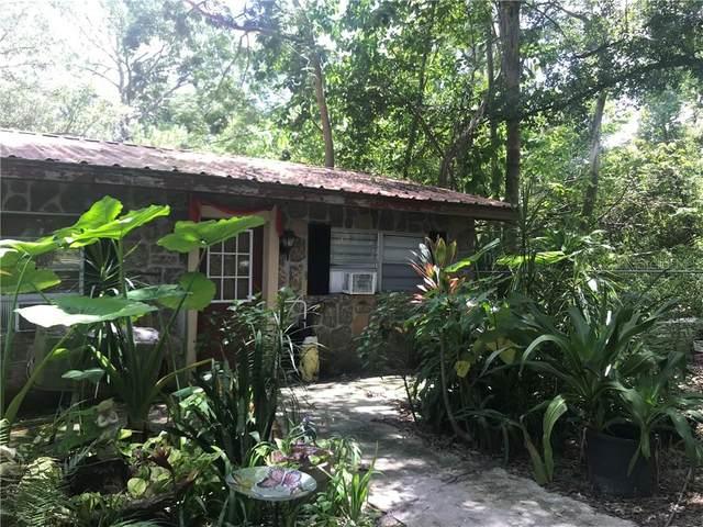 87 Moss Road E, Auburndale, FL 33823 (MLS #P4911845) :: Premium Properties Real Estate Services