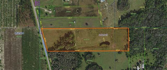 Brown Shinn Road, Polk City, FL 33868 (MLS #P4911914) :: KELLER WILLIAMS ELITE PARTNERS IV REALTY