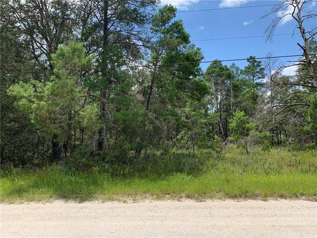 Pine View Trail, Kissimmee, FL 34747 (MLS #P4911920) :: Sarasota Home Specialists