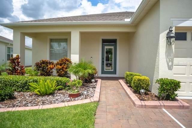 3590 La Jolla Drive NW, Clermont, FL 34711 (MLS #P4912012) :: Pepine Realty