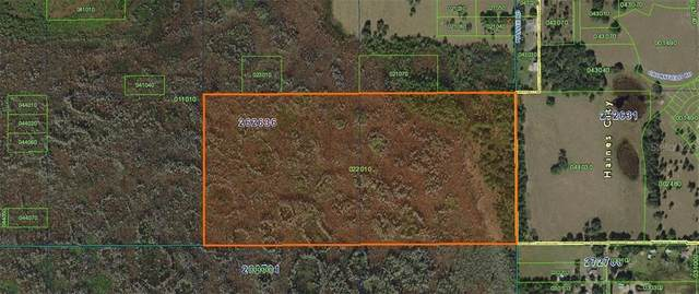Diamond Acres Road Road, Davenport, FL 33837 (MLS #P4912367) :: Lockhart & Walseth Team, Realtors