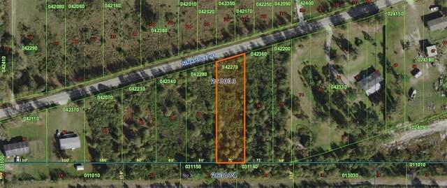 Sink Hole Road, Bartow, FL 33830 (MLS #P4912371) :: Team Borham at Keller Williams Realty