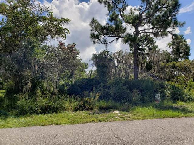 1506 Riley Avenue, Sebring, FL 33872 (MLS #P4912393) :: Rabell Realty Group