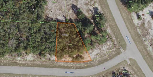 186 Sweet Pea Court, Poinciana, FL 34759 (MLS #P4912459) :: Bustamante Real Estate