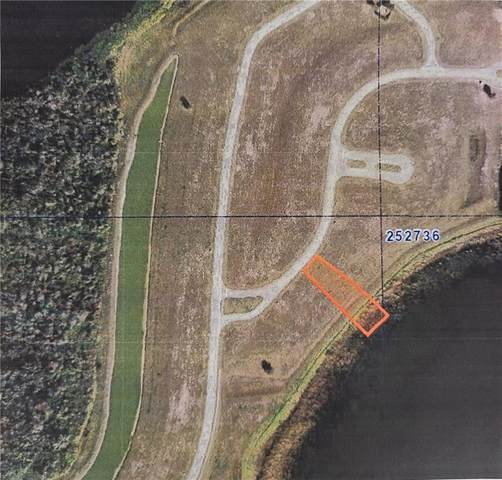 422 Water Fern Trail Drive, Auburndale, FL 33823 (MLS #P4912486) :: Lockhart & Walseth Team, Realtors
