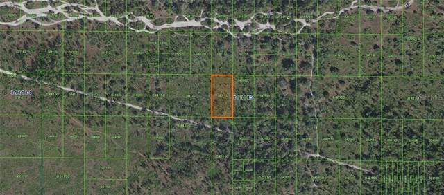 INACCESSIBLE RIVER R Inaccessible Tract, Frostproof, FL 33843 (MLS #P4912509) :: Zarghami Group