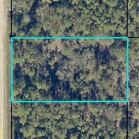 10610 Beckenger Ave, Hastings, FL 32145 (MLS #P4912535) :: Baird Realty Group