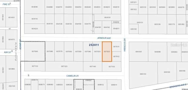 318 Armour Avenue, Auburndale, FL 33823 (MLS #P4912536) :: The Duncan Duo Team