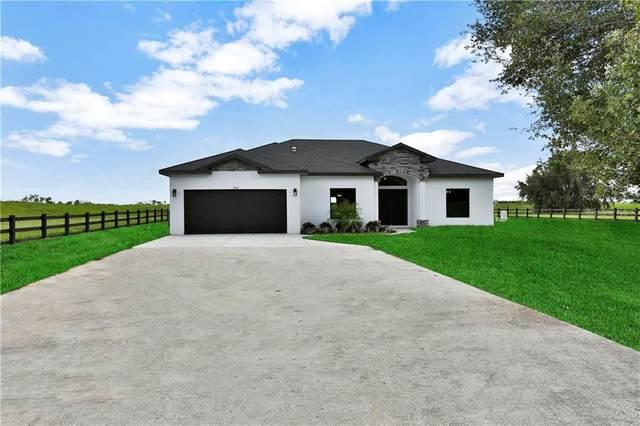 3962 Mammoth Grove Road, Lake Wales, FL 33898 (MLS #P4912558) :: Cartwright Realty