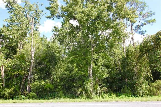 LOT 10 Hwy 17 92  N, Davenport, FL 33837 (MLS #P4912651) :: The Duncan Duo Team