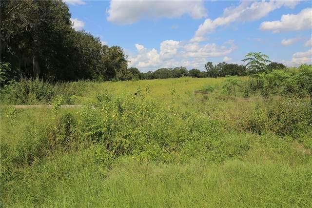 2140 Old Brewster Road, Fort Meade, FL 33841 (MLS #P4912683) :: Prestige Home Realty