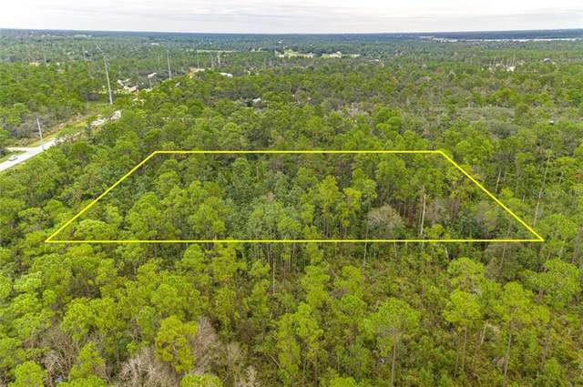 419 Crews Drive, Sebring, FL 33872 (MLS #P4912722) :: Griffin Group