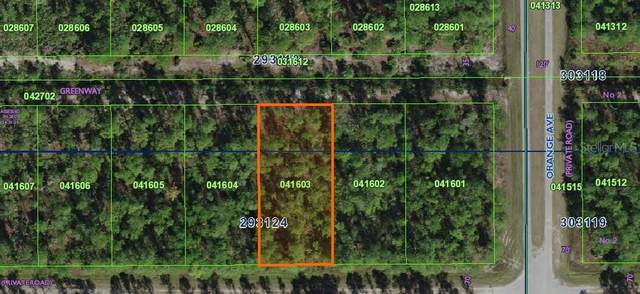 Althea Drive, Indian Lake Estates, FL 33855 (MLS #P4912748) :: Premier Home Experts
